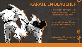 Karate en Beauchef