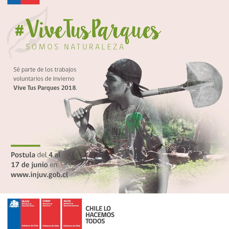 Vistoso El Veterinario Se Reanuda Ornamento - Ejemplo De Colección ...